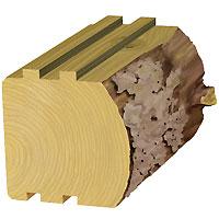 5 1/2 Rustic Log