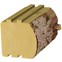 6 x 6 Rustic Log